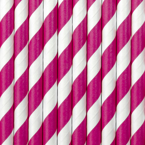 Dark Pink Striped Paper Straws ( x 10)